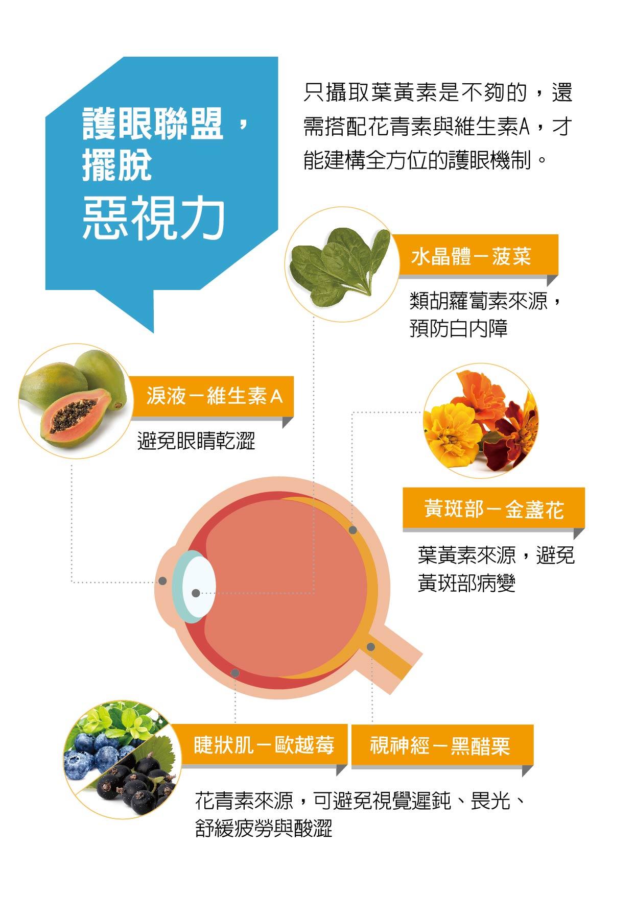 保護眼睛的營養素